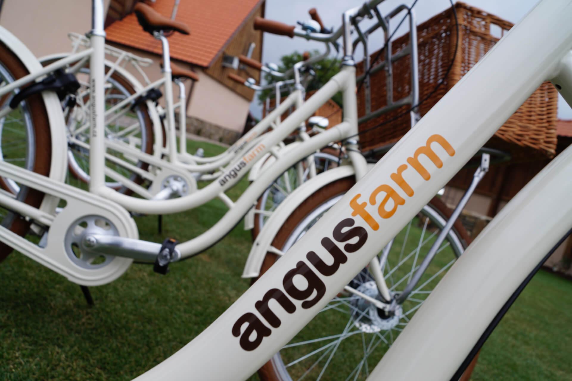 Půjčte si kolo na váš cyklovýlet